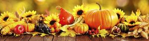 thanksgiving-newsletter-image