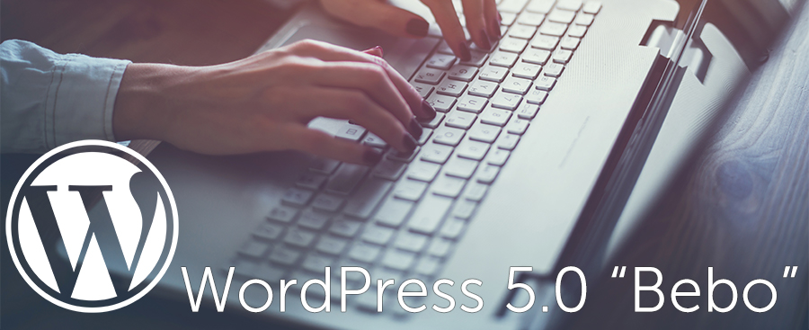 "Wordpress 5.0 ""Bebo"" Released Today"